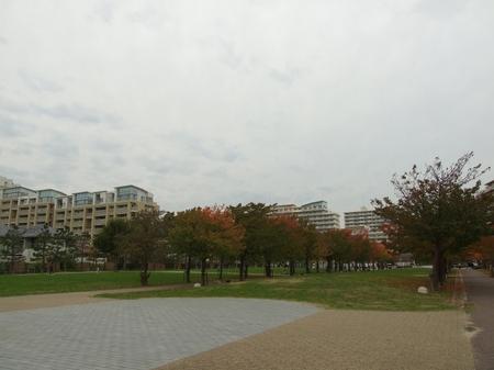 20091124_2