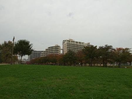 20091124_5