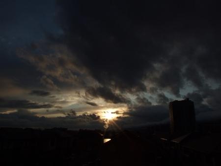 20100310_4